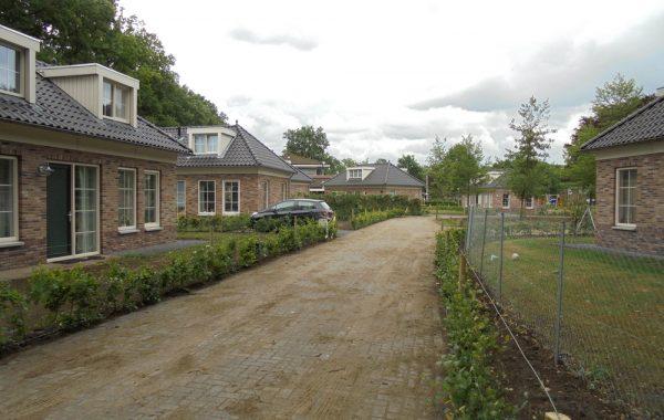 scholtenhagen1