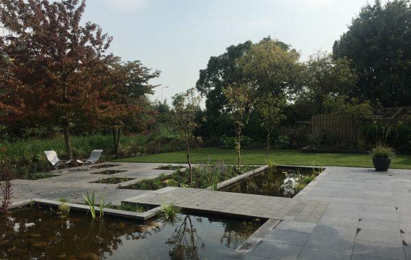 Een natuurlijke tuin met strakke vormgeving in Veenendaal