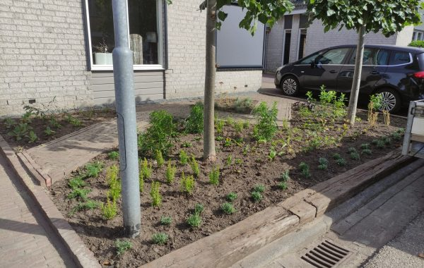 Renovatie tuin in Lienden